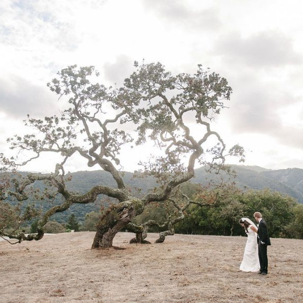 Lindsey & Cory.  Carmel Valley Wedding