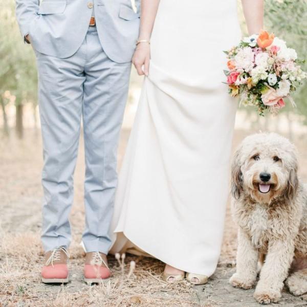 Brooke & Will.  Romantic Outdoor Wedding