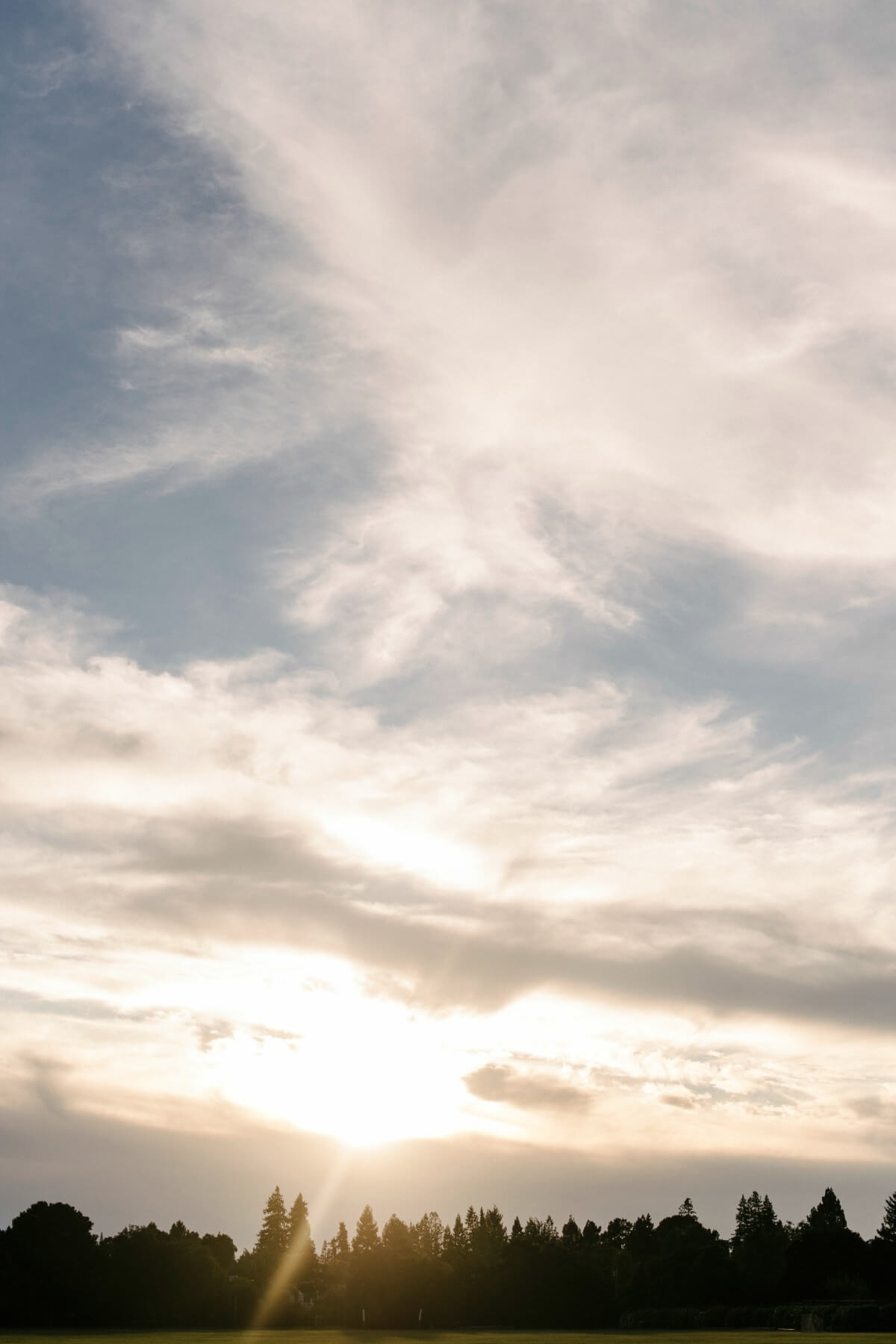 Melanie Duerkopp, Northern California Wedding Photographer, Melanie Duerkopp Photography, pastel wedding, sparkle, outdoor wedding, Bay Area wedding photographer, Menlo Park, classic, elegant, black tie, Menlo Park wedding, Garden Court Hotel, Menlo Circus Club, Suzy Somers, Flower Divas, La Tavola, Tomfoolery