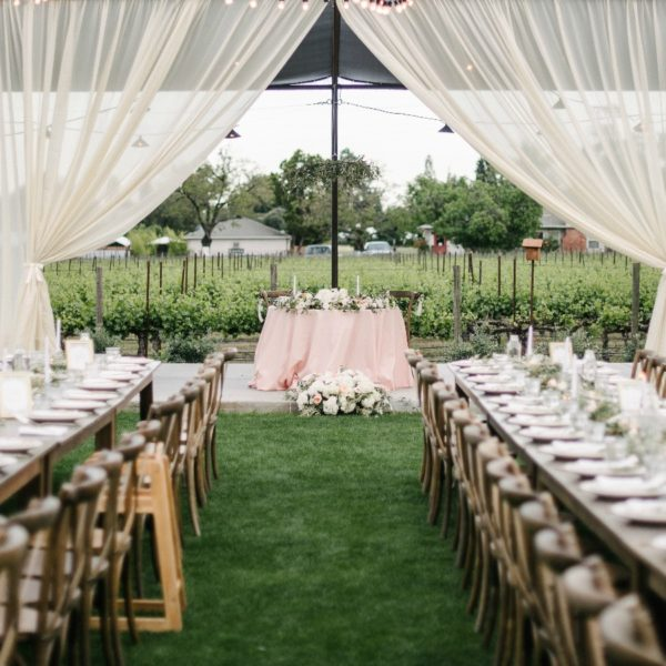 Iris & Daniel's Intimate Outdoor Napa Wedding